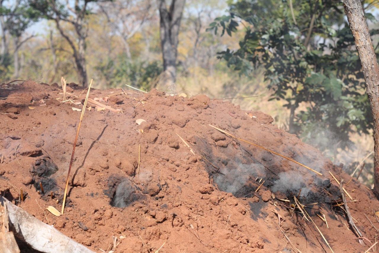 Een nog brandende kiln in de bossen bij Livingstone