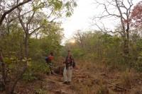 Foto bij Mount Mulanje