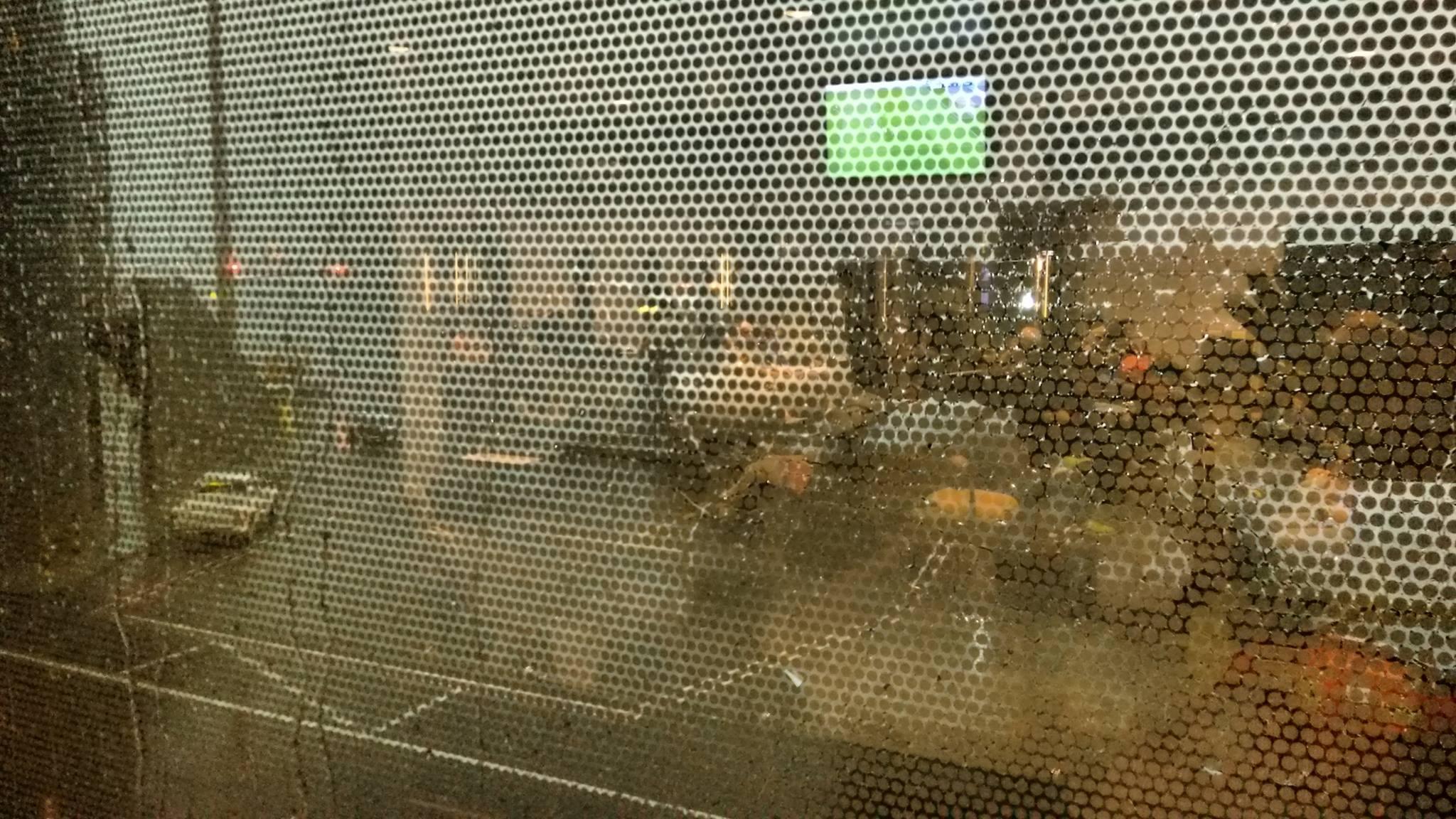 Foto bij Rain in Qatar