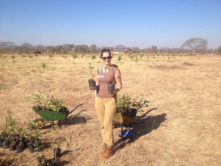 Foto bij Eerste boom plant dag