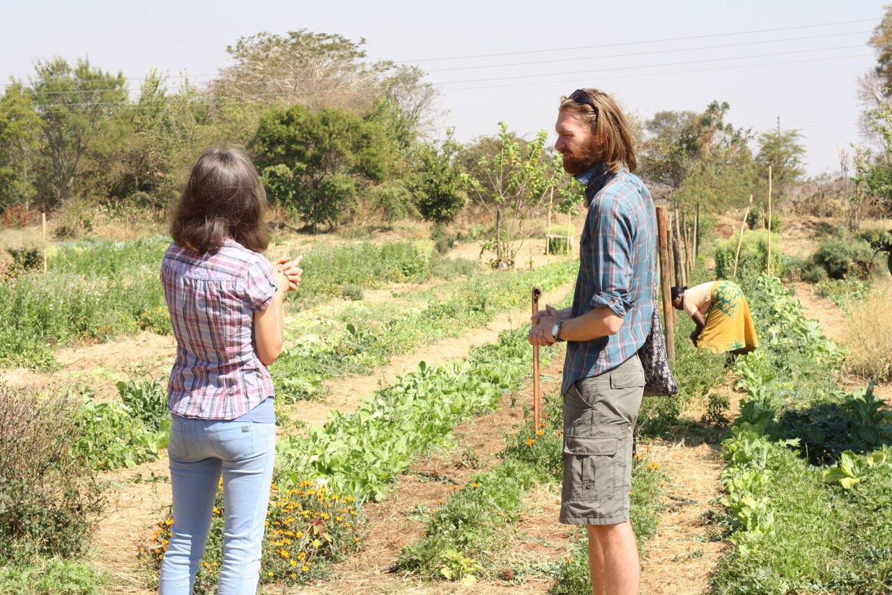 Foto bij Zambia | Biologisch, commercieel?