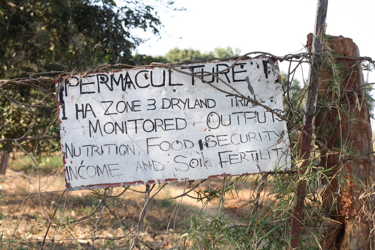 Permaculture Plot