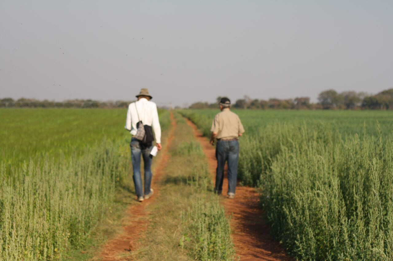 Foto bij Zambia | Kasisi Agricultural Training Centre