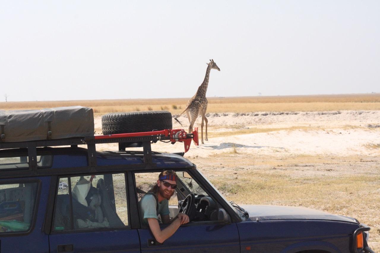 Foto bij Landy | Op safari