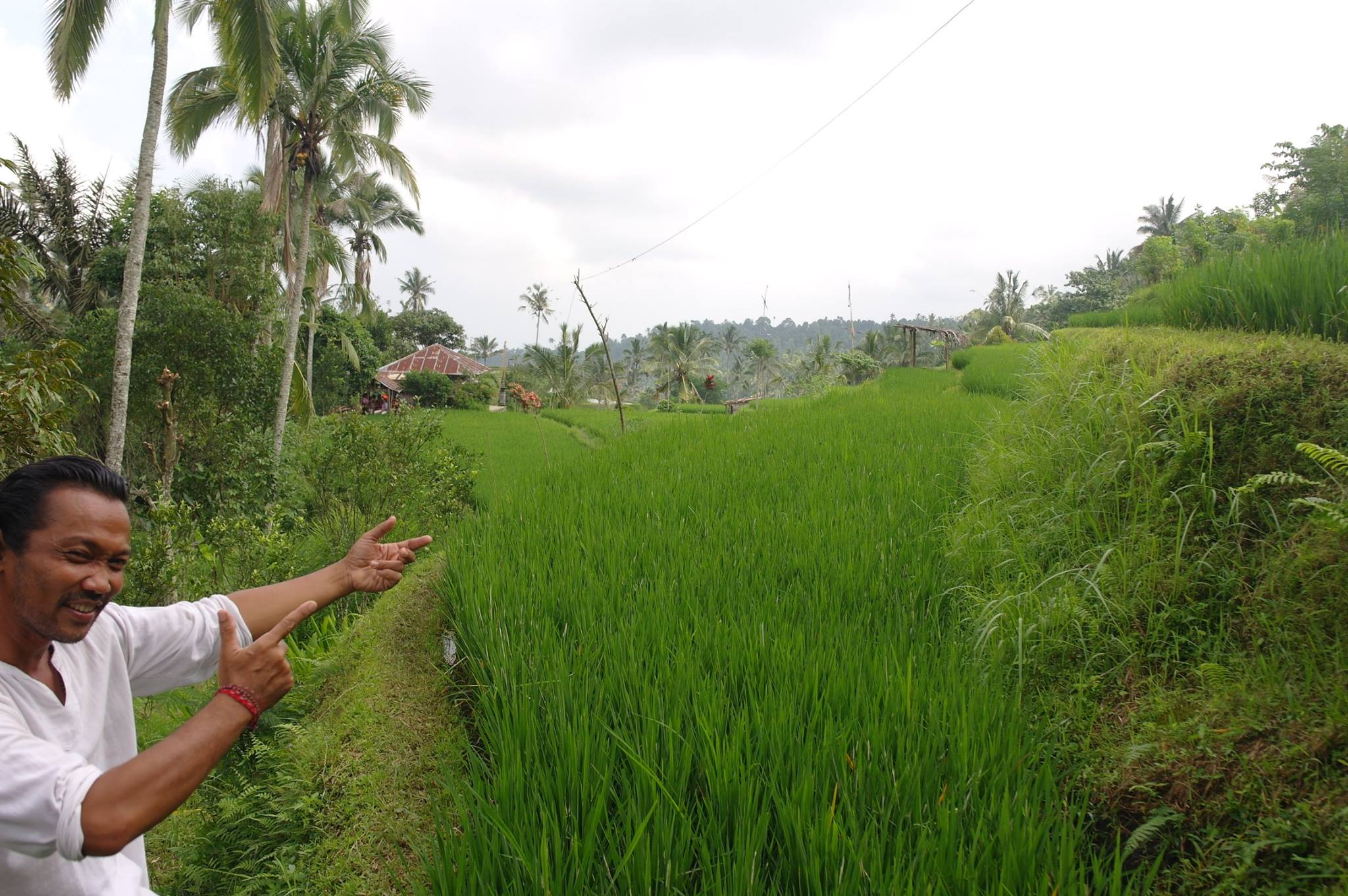 Foto bij Omunity Bali