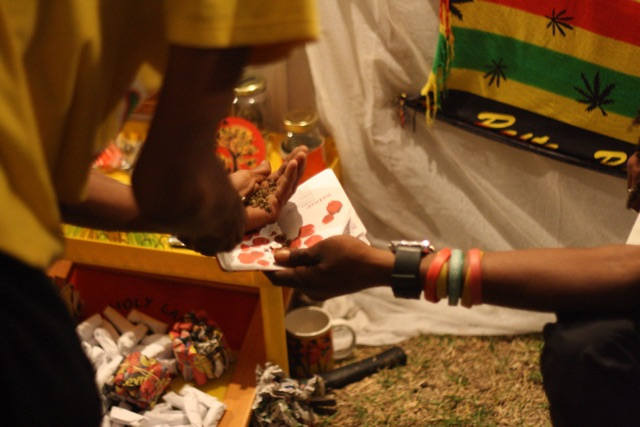 Foto bij Rastafari